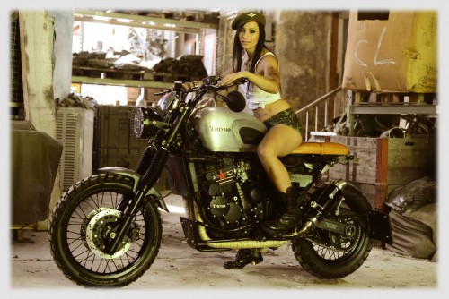 triumph scrambler umbau galerie. Black Bedroom Furniture Sets. Home Design Ideas